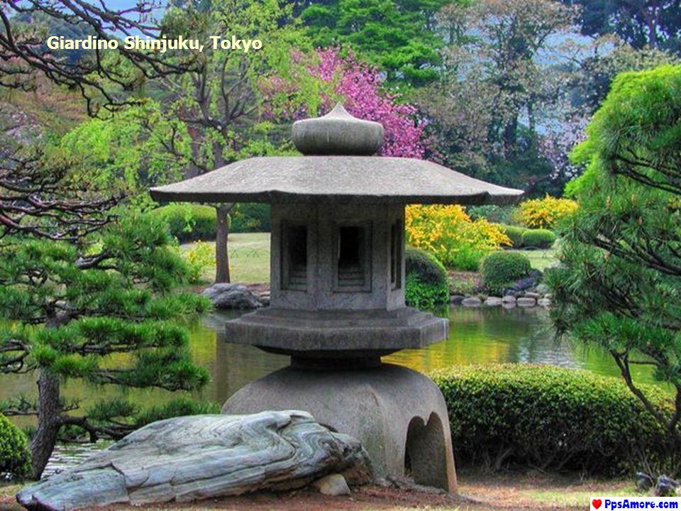 Giardino Tempio Rock, Kyoto