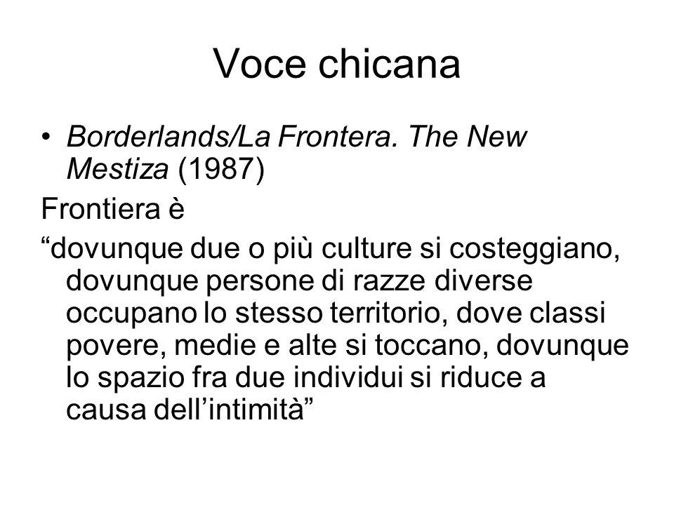 Voce chicana Borderlands/La Frontera. The New Mestiza (1987) Frontiera è dovunque due o più culture si costeggiano, dovunque persone di razze diverse