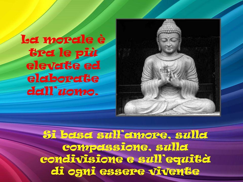 La morale è tra le più elevate ed elaborate dalluomo. Si basa sullamore, sulla compassione, sulla condivisione e sullequità di ogni essere vivente
