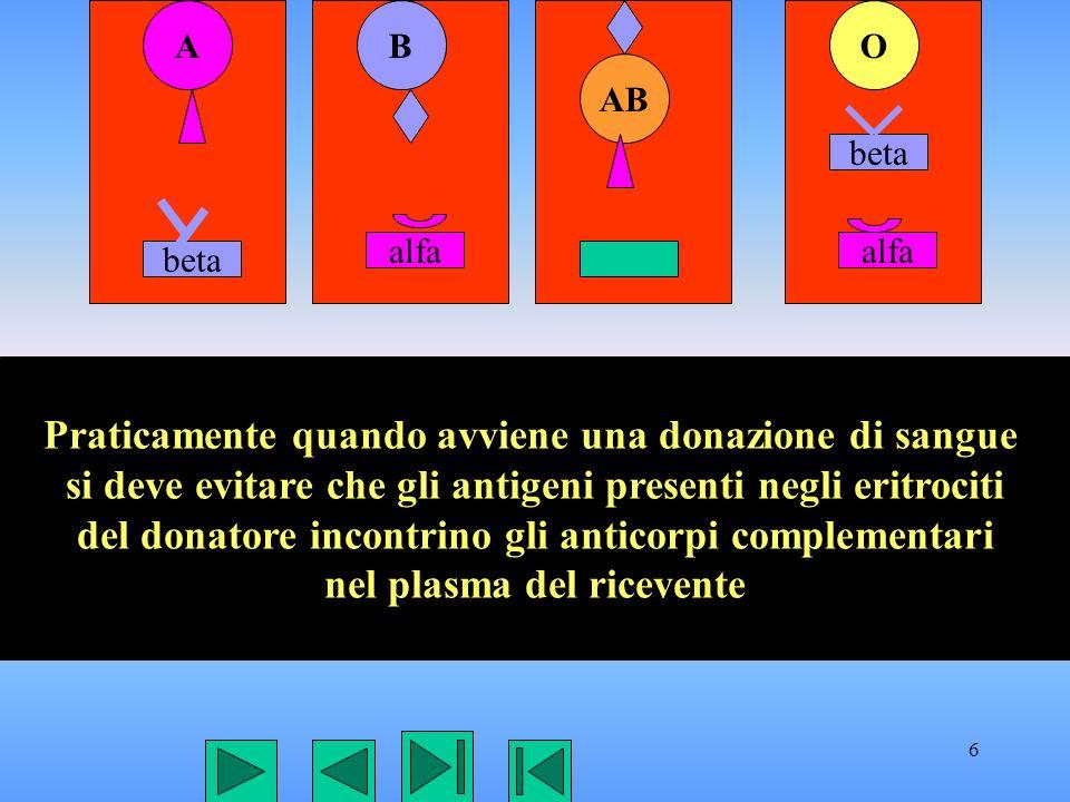 6 AB AB O beta alfa beta Praticamente quando avviene una donazione di sangue si deve evitare che gli antigeni presenti negli eritrociti del donatore i