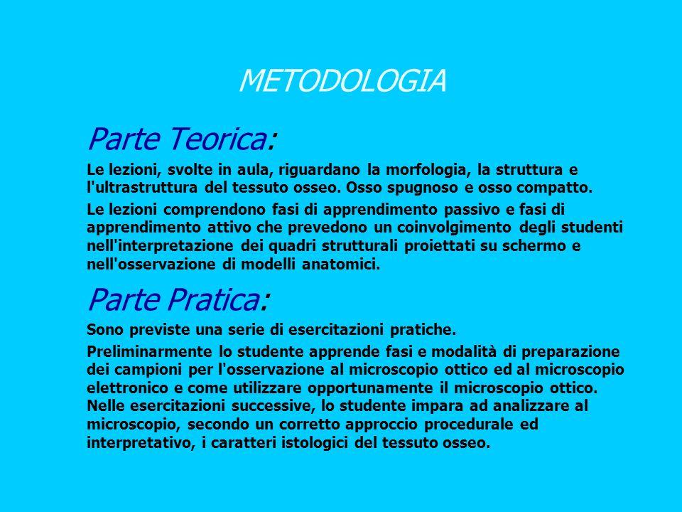 METODOLOGIA Parte Teorica: 1. 1. Le lezioni, svolte in aula, riguardano la morfologia, la struttura e l'ultrastruttura del tessuto osseo. Osso spugnos