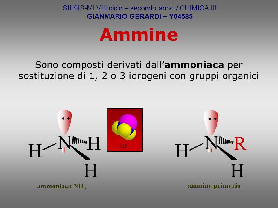 È davvero notevole la collezione di molecole organiche di interesse biologico che riguardano il gruppo funzionale amminico e i suoi derivati.