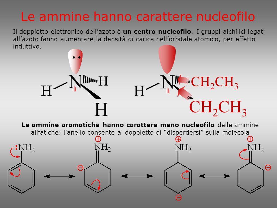 N C 2 H 5 H H N C 2 H 5 H 5 C 2 H N C 2 H 5 C 2 H 5 H 5 C 2 Carattere nucleofilo delle ammine Il carattere nucleofilo quindi varia Lelettronegatività dellazoto e il doppietto elettronico consentono alle ammine anche di stabilire ponti idrogeno