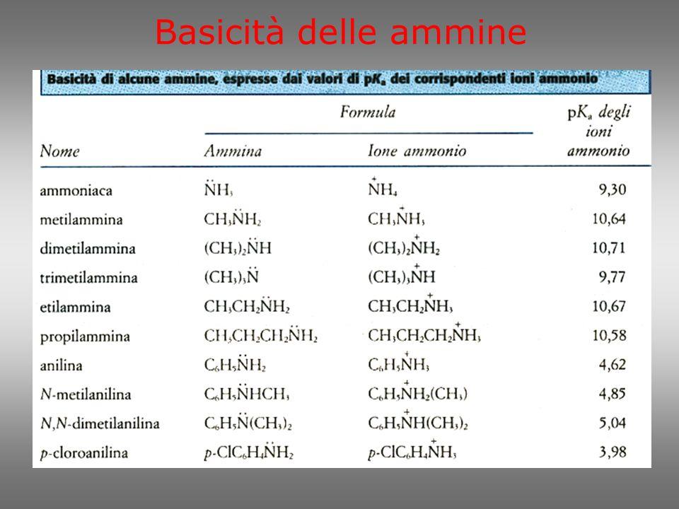 Acidità delle ammine Le ammidi sono derivati degli acidi carbossilici e delle ammine che rivedremo tra poco.