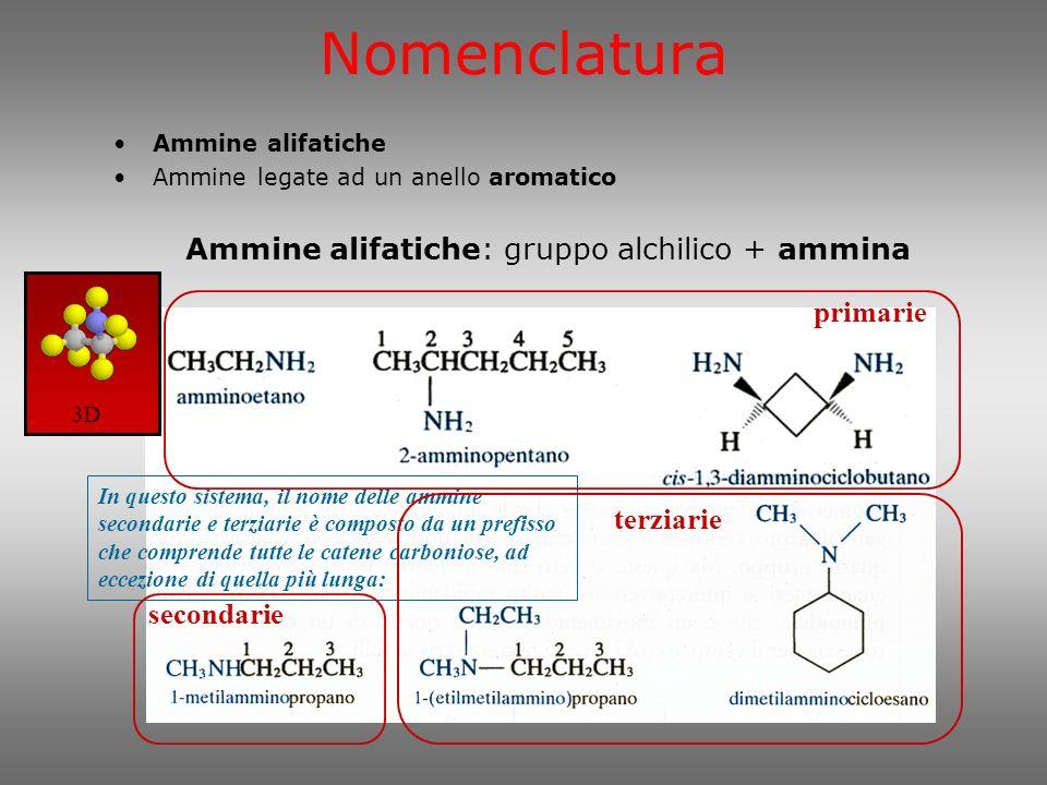 CH C H NH 2 H C H H H H CH C H H NH 2 C H H H H 1-propanammina 1-amminopropano 1-propilammina 2-propanammina 2-amminopropano 2-propilammina 3D Nomenclatura NCH 3 CCH 3 H 3 C CH 3 N-metil-N-tert-butil-amminobenzene metil-tert-butil-fenilammina N-metil-N-isopropil-anilina