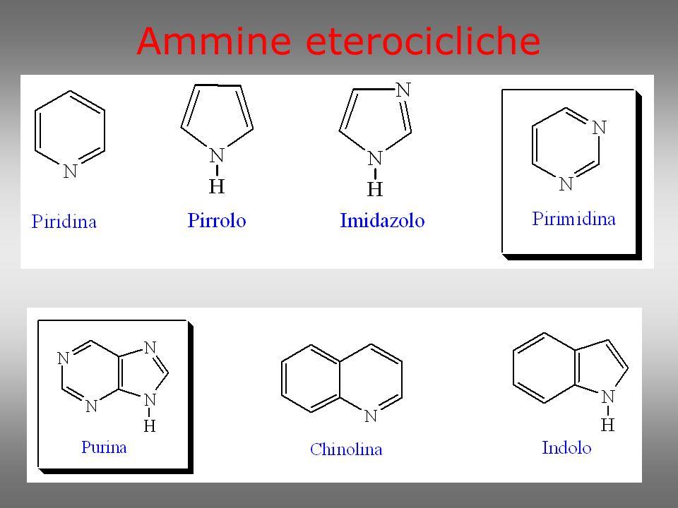 Il doppietto elettronico dellazoto è un centro nucleofilo.