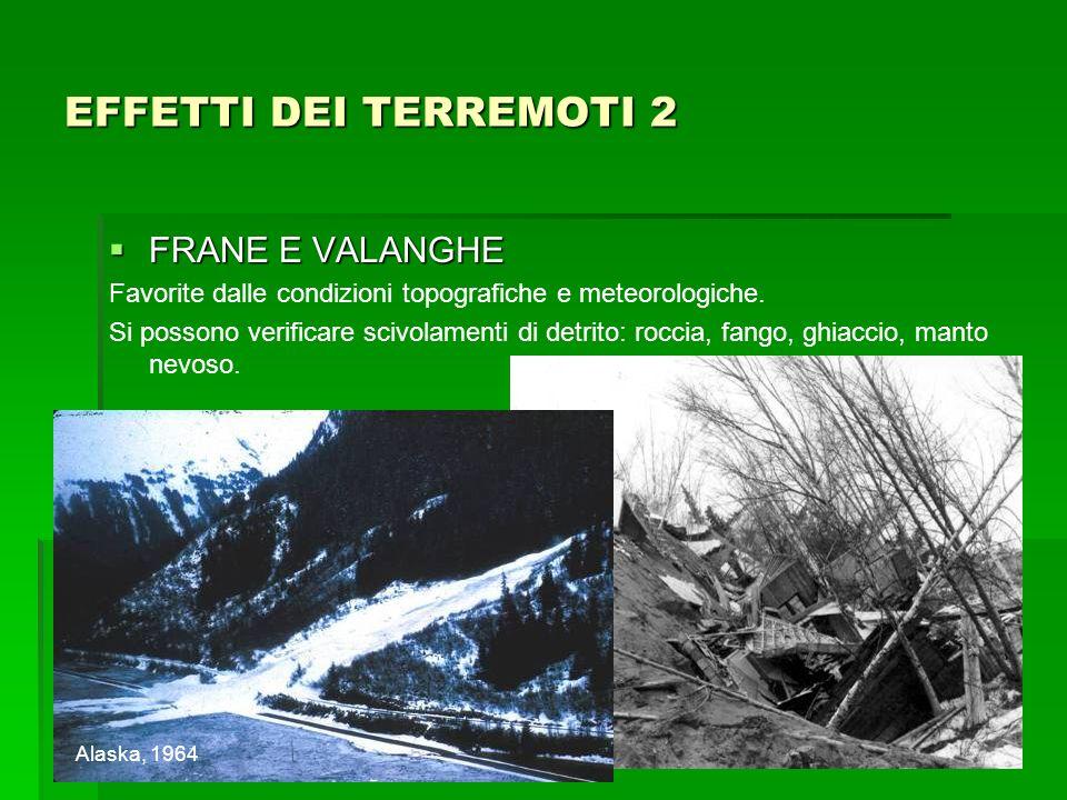 FRANE E VALANGHE FRANE E VALANGHE Favorite dalle condizioni topografiche e meteorologiche. Si possono verificare scivolamenti di detrito: roccia, fang