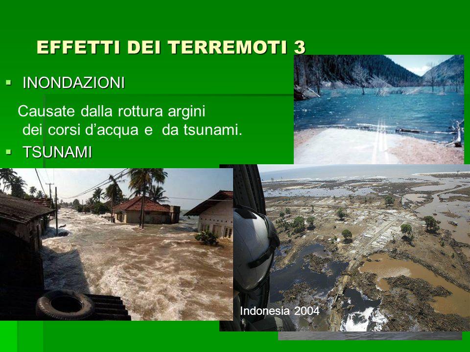 INONDAZIONI INONDAZIONI Causate dalla rottura argini dei corsi dacqua e da tsunami. TSUNAMI TSUNAMI Quando il movimento di faglia associato al terremo