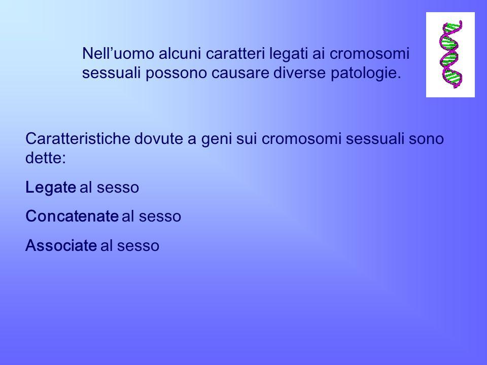 Nelluomo alcuni caratteri legati ai cromosomi sessuali possono causare diverse patologie. Caratteristiche dovute a geni sui cromosomi sessuali sono de