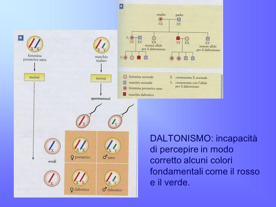 DALTONISMO: incapacità di percepire in modo corretto alcuni colori fondamentali come il rosso e il verde.