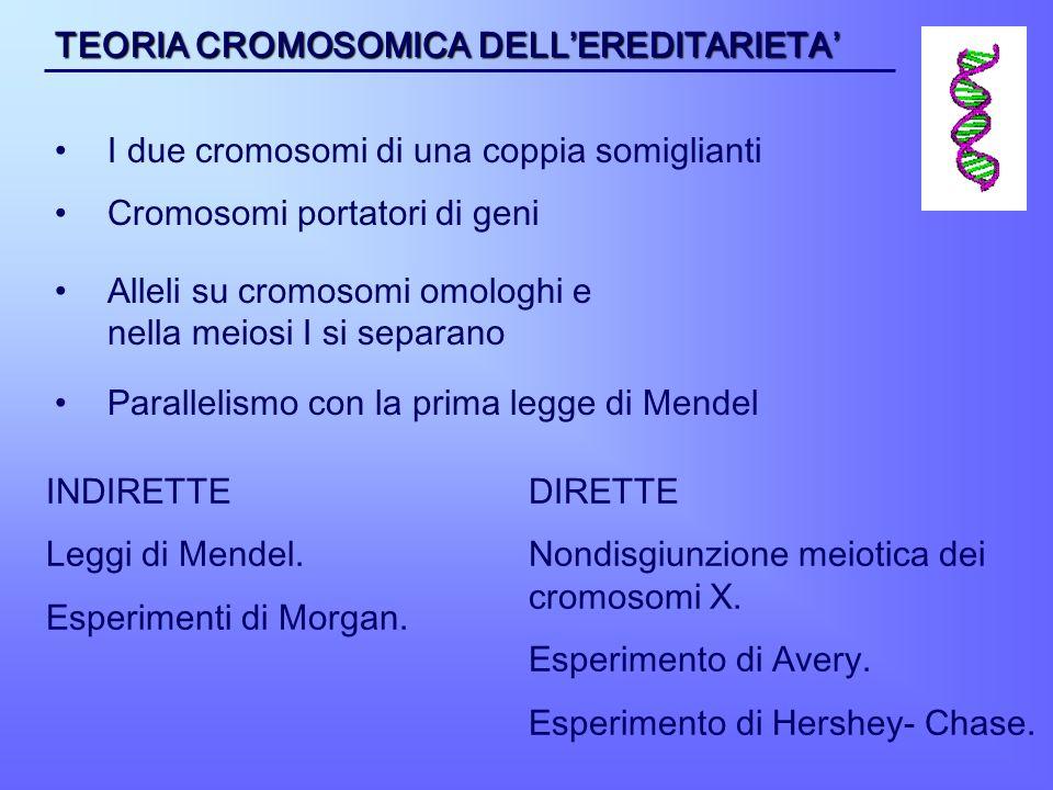 INDIRETTE Leggi di Mendel. Esperimenti di Morgan. DIRETTE Nondisgiunzione meiotica dei cromosomi X. Esperimento di Avery. Esperimento di Hershey- Chas
