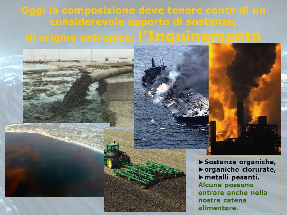 Oggi la composizione deve tenere conto di un considerevole apporto di sostanze, di origine antropica: lInquinamento Sostanze organiche, organiche clor