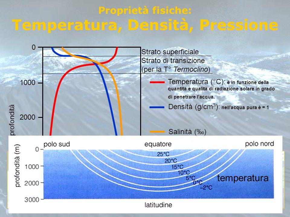 Proprietà fisiche: Temperatura, Densità, Pressione 0 1000 2000 3000 4000 profondità Strato superficiale Strato di transizione (per la T° Termoclino) T