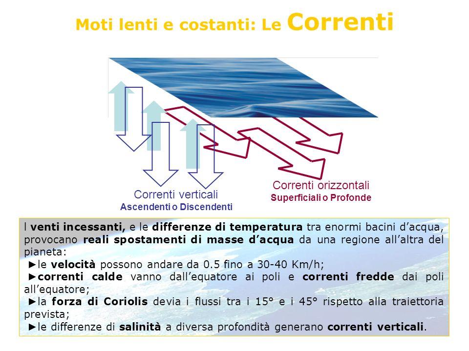 Moti lenti e costanti: Le Correnti l venti incessanti, e le differenze di temperatura tra enormi bacini dacqua, provocano reali spostamenti di masse d