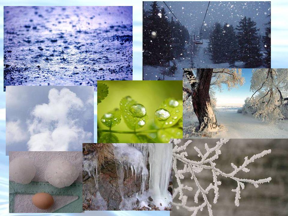 Oggi la composizione deve tenere conto di un considerevole apporto di sostanze, di origine antropica: lInquinamento Sostanze organiche, organiche clorurate, metalli pesanti.