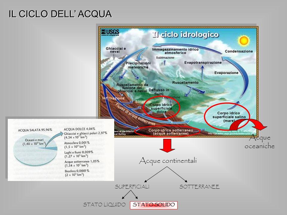 Acque oceaniche Acque continentali SUPERFICIALI SOTTERRANEE STATO SOLIDO STATO LIQUIDO IL CICLO DELL ACQUA