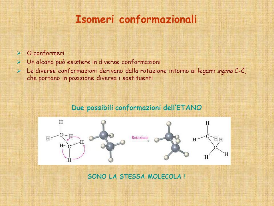 O conformeri Un alcano può esistere in diverse conformazioni Le diverse conformazioni derivano dalla rotazione intorno ai legami sigma C-C, che portan