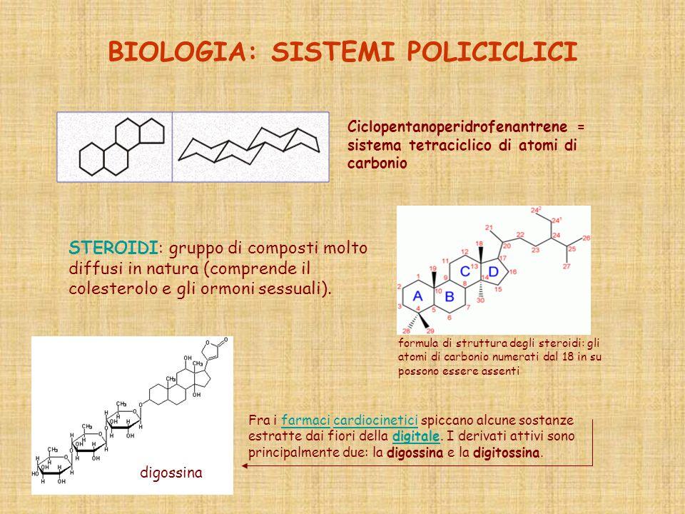 BIOLOGIA: SISTEMI POLICICLICI Ciclopentanoperidrofenantrene = sistema tetraciclico di atomi di carbonio STEROIDI: gruppo di composti molto diffusi in