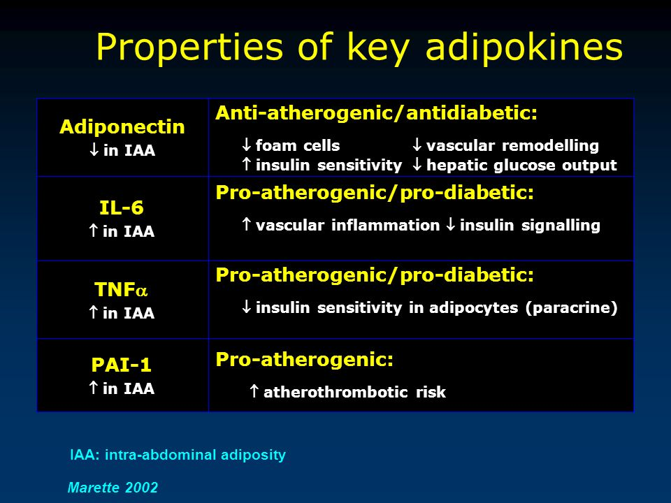 Adiponectin in IAA Anti-atherogenic/antidiabetic: foam cells vascular remodelling insulin sensitivity hepatic glucose output IL-6 in IAA Pro-atherogen