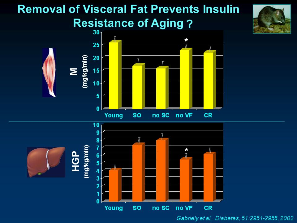 Gabriely et al, Diabetes, 51:2951-2958, 2002 Removal of Visceral Fat Prevents Insulin Resistance of Aging M (mg/kg/min) HGP (mg/kg/min) * * ?