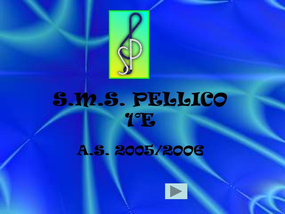 S.M.S. PELLICO 1°E A.S. 2005/2OO6