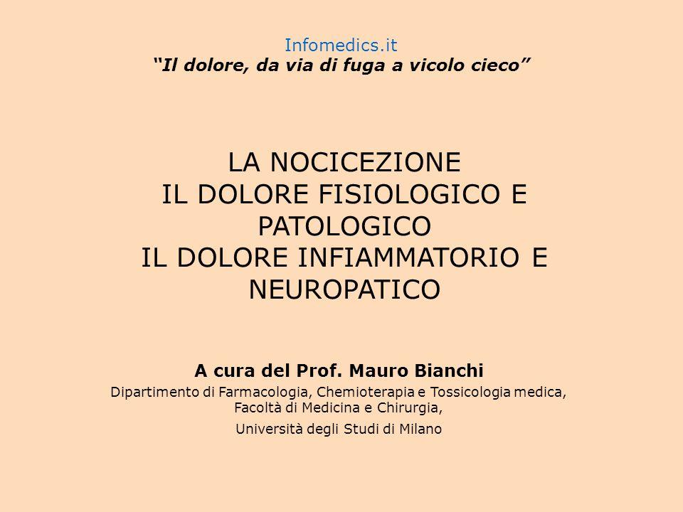 La nocicezione, risultato di una somma algebrica Lintensità dellinformazione nocicettiva alla corteccia cerebrale è la risultante di tutti i fenomeni eccitatori (trasmissione attraverso le vie ascendenti) e inibitori (modulazione segmentaria e discendente) che si svolgono nel sistema nervoso centrale.