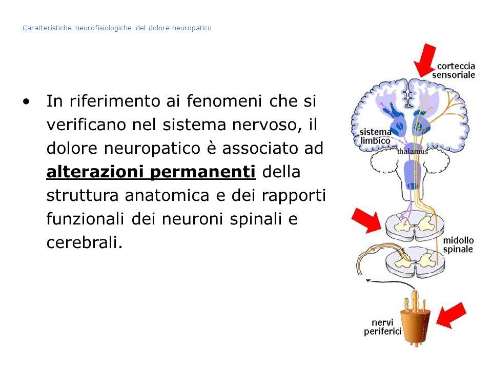 In riferimento ai fenomeni che si verificano nel sistema nervoso, il dolore neuropatico è associato ad alterazioni permanenti della struttura anatomic