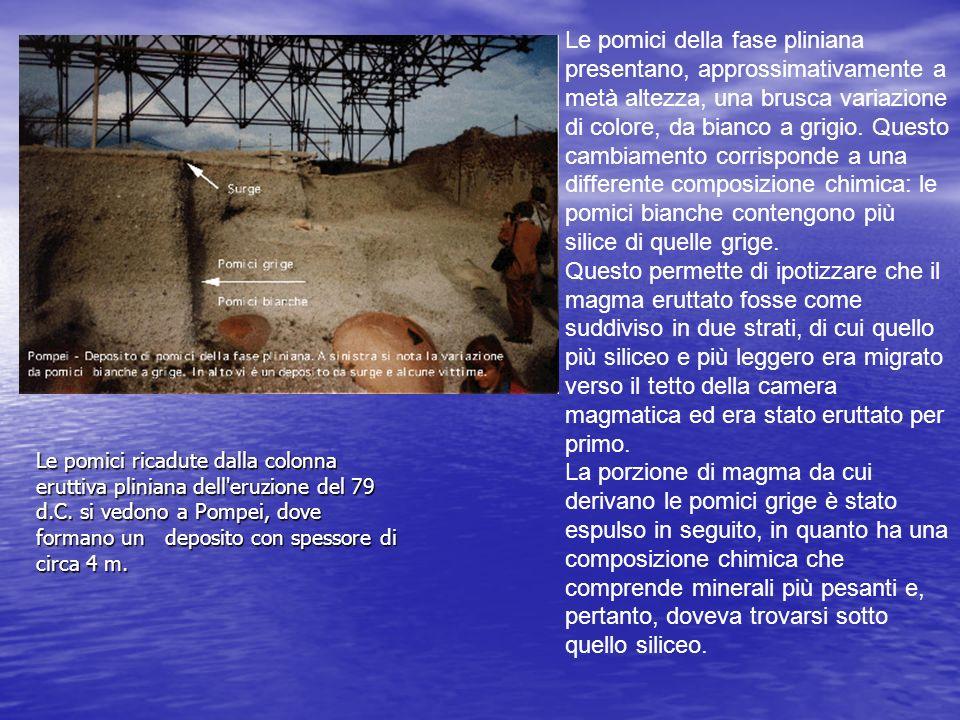 Le pomici ricadute dalla colonna eruttiva pliniana dell'eruzione del 79 d.C. si vedono a Pompei, dove formano un deposito con spessore di circa 4 m. L