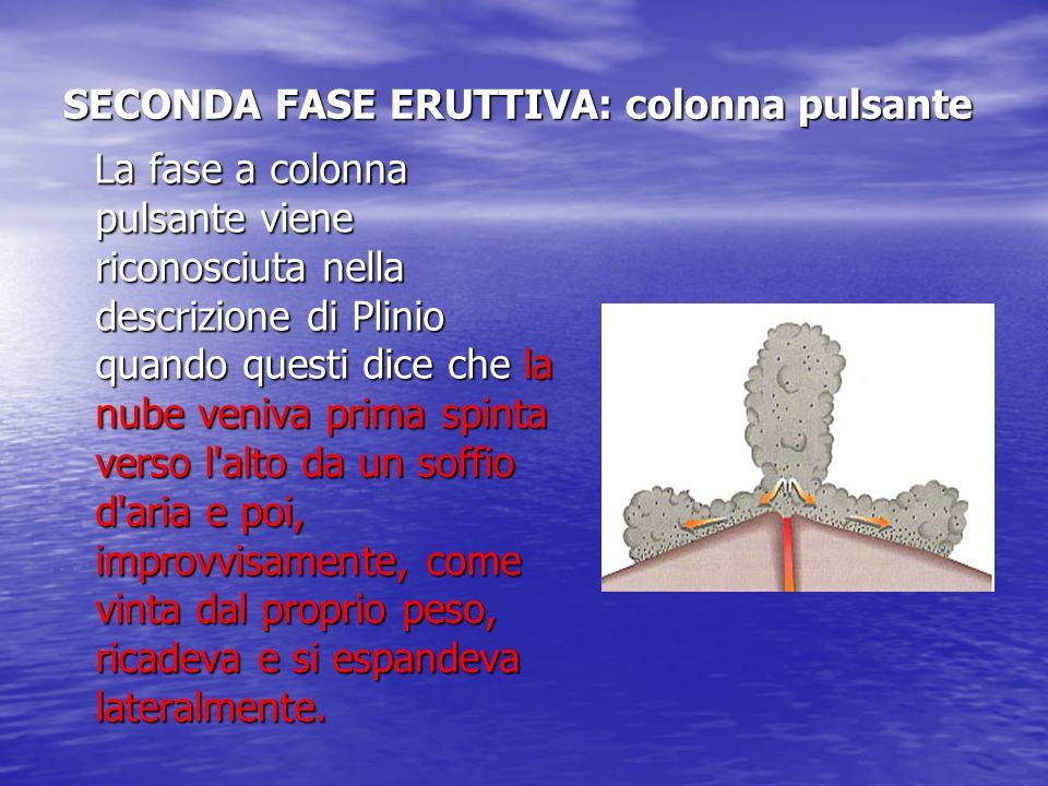 SECONDA FASE ERUTTIVA: colonna pulsante La fase a colonna pulsante viene riconosciuta nella descrizione di Plinio quando questi dice che la nube veniv