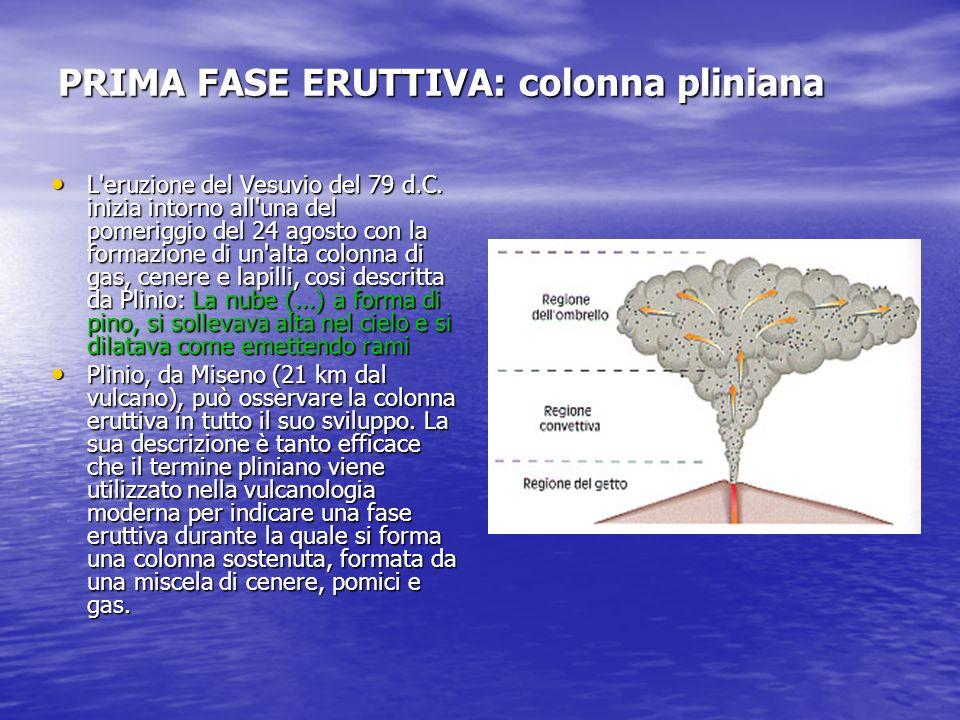 PRIMA FASE ERUTTIVA: colonna pliniana L'eruzione del Vesuvio del 79 d.C. inizia intorno all'una del pomeriggio del 24 agosto con la formazione di un'a