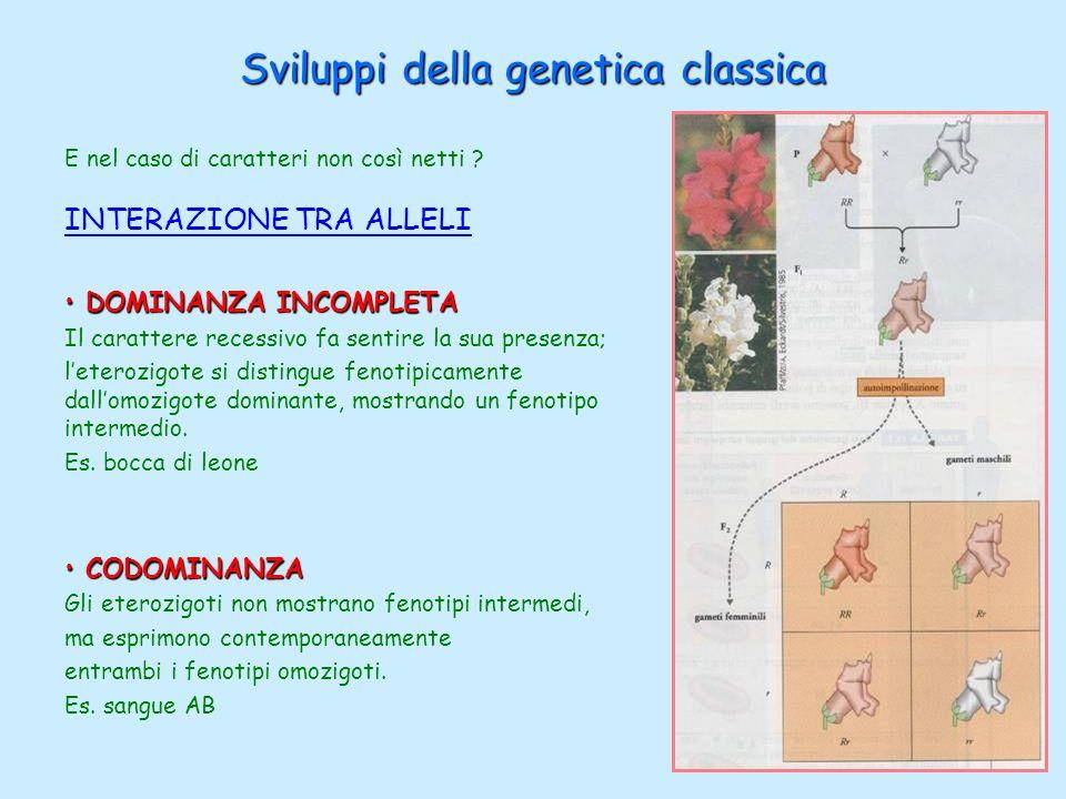 Sviluppi della genetica classica E nel caso di caratteri non così netti ? INTERAZIONE TRA ALLELI DOMINANZA INCOMPLETA DOMINANZA INCOMPLETA Il caratter