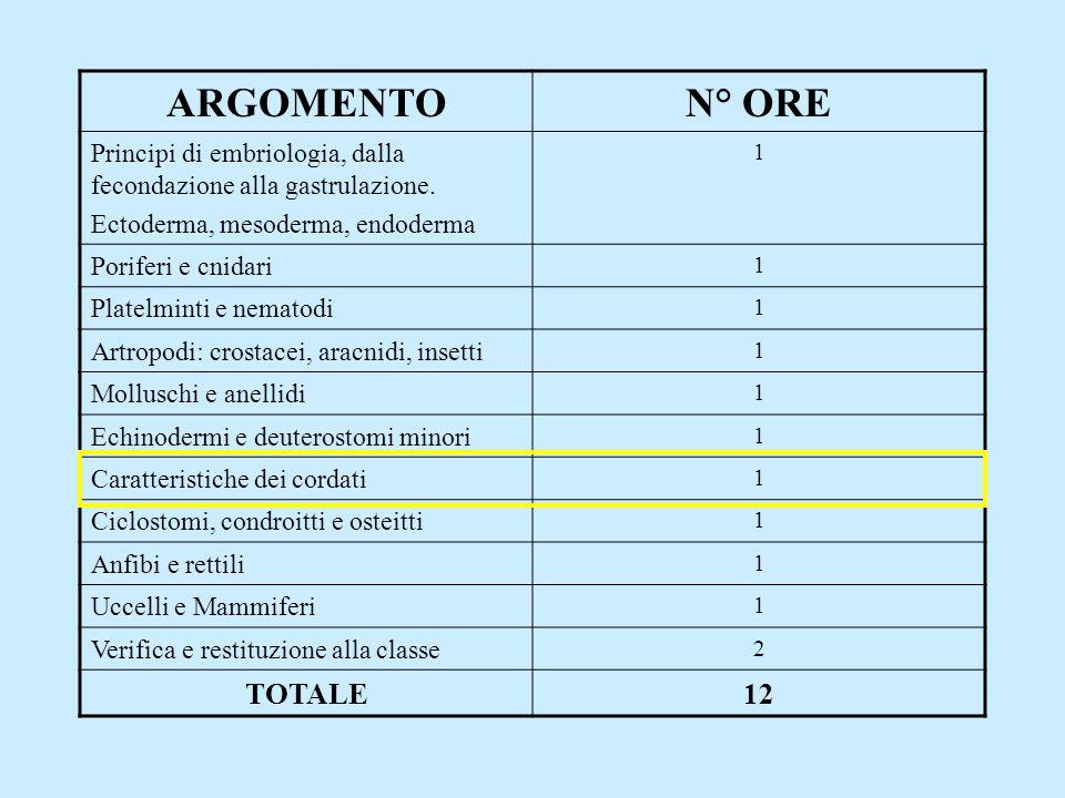 ARGOMENTON° ORE Principi di embriologia, dalla fecondazione alla gastrulazione. Ectoderma, mesoderma, endoderma 1 Poriferi e cnidari 1 Platelminti e n