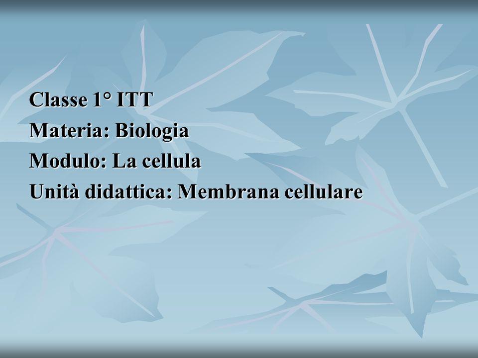Classe 1° ITT Materia: Biologia Modulo: La cellula Unità didattica: Membrana cellulare