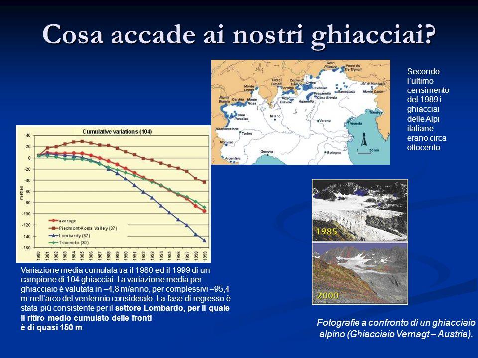 Cosa accade ai nostri ghiacciai? Fotografie a confronto di un ghiacciaio alpino (Ghiacciaio Vernagt – Austria). Variazione media cumulata tra il 1980