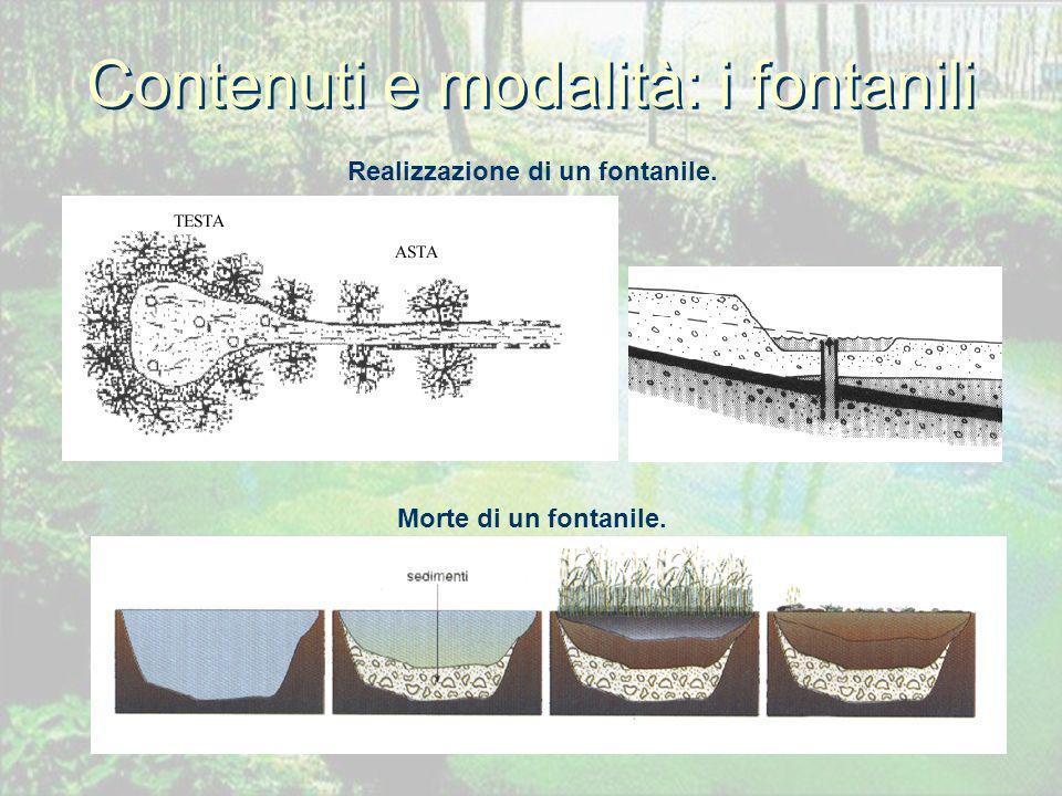 Contenuti e modalità: i fontanili Realizzazione di un fontanile. Morte di un fontanile.