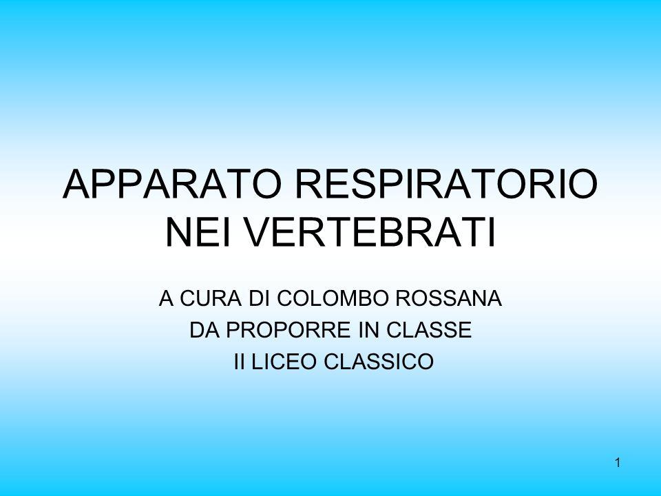 1 APPARATO RESPIRATORIO NEI VERTEBRATI A CURA DI COLOMBO ROSSANA DA PROPORRE IN CLASSE II LICEO CLASSICO