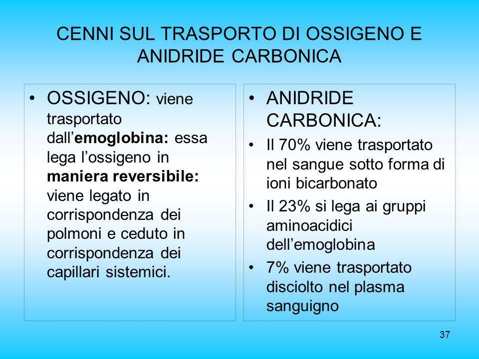 37 CENNI SUL TRASPORTO DI OSSIGENO E ANIDRIDE CARBONICA OSSIGENO: viene trasportato dallemoglobina: essa lega lossigeno in maniera reversibile: viene
