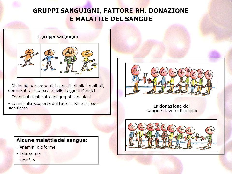GRUPPI SANGUIGNI, FATTORE RH, DONAZIONE E MALATTIE DEL SANGUE - Si danno per assodati i concetti di alleli multipli, dominanti e recessivi e delle Leg