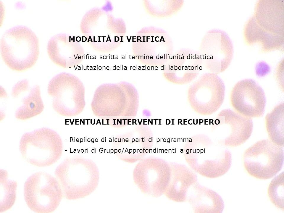 MODALITÀ DI VERIFICA - Verifica scritta al termine dellunità didattica - Valutazione della relazione di laboratorio EVENTUALI INTERVENTI DI RECUPERO -
