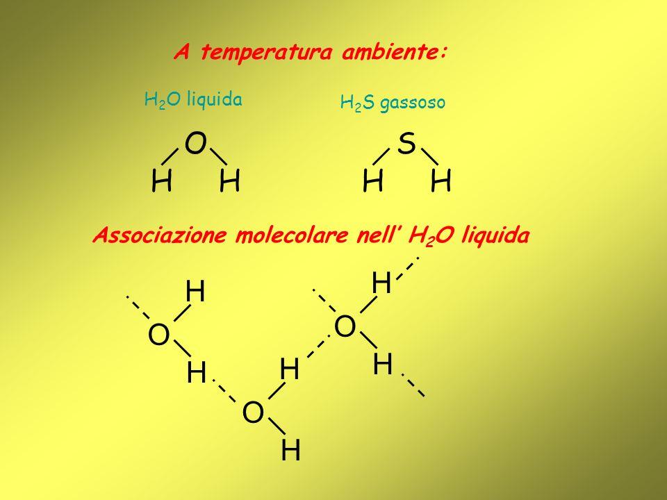A temperatura ambiente: H 2 O liquida O HH S HH Associazione molecolare nell H 2 O liquida H 2 S gassoso O H H O H H O H H