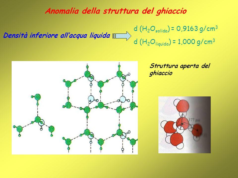 Anomalia della struttura del ghiaccio Densità inferiore allacqua liquida d (H 2 O solida ) = 0,9163 g/cm 3 d (H 2 O liquida ) = 1,000 g/cm 3 Struttura