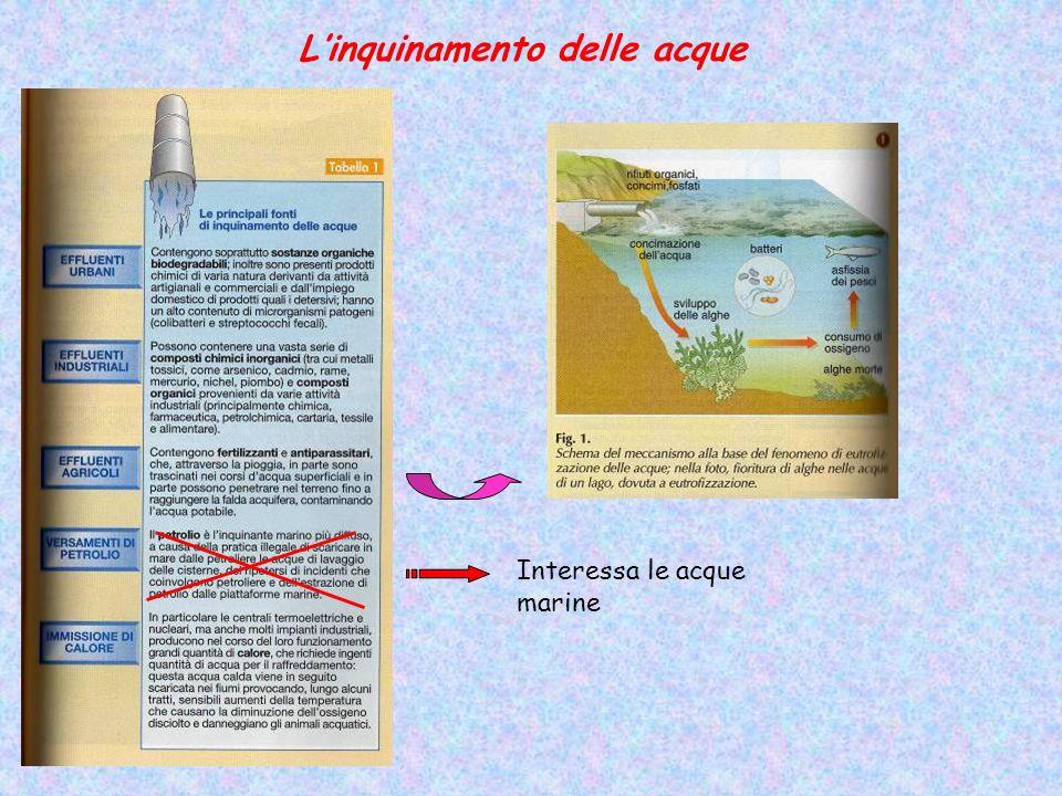 Linquinamento delle acque Interessa le acque marine