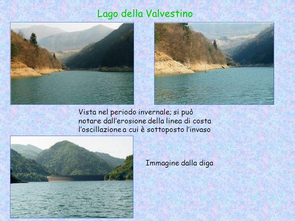 Lago della Valvestino Vista nel periodo invernale; si può notare dallerosione della linea di costa loscillazione a cui è sottoposto linvaso Immagine d