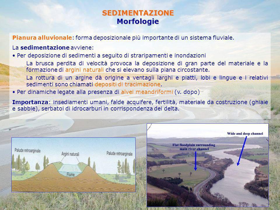 SEDIMENTAZIONEMorfologie Pianura alluvionale: forma deposizionale più importante di un sistema fluviale. La sedimentazione avviene: Per deposizione di