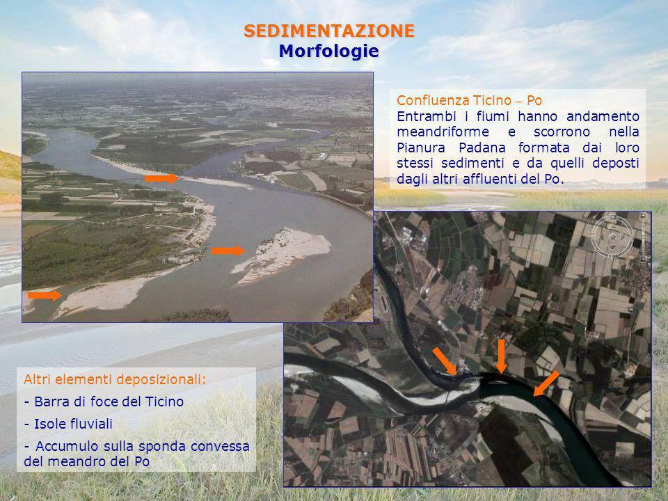 SEDIMENTAZIONEMorfologie Confluenza Ticino – Po Entrambi i fiumi hanno andamento meandriforme e scorrono nella Pianura Padana formata dai loro stessi