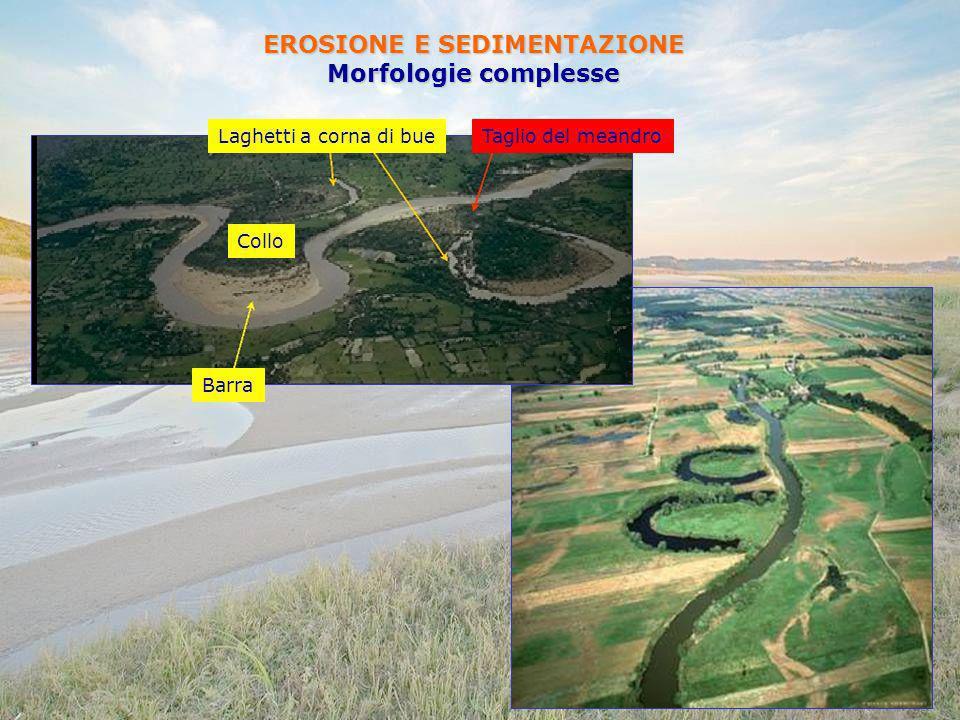 EROSIONE E SEDIMENTAZIONE Morfologie complesse Barra Laghetti a corna di bueTaglio del meandro Collo