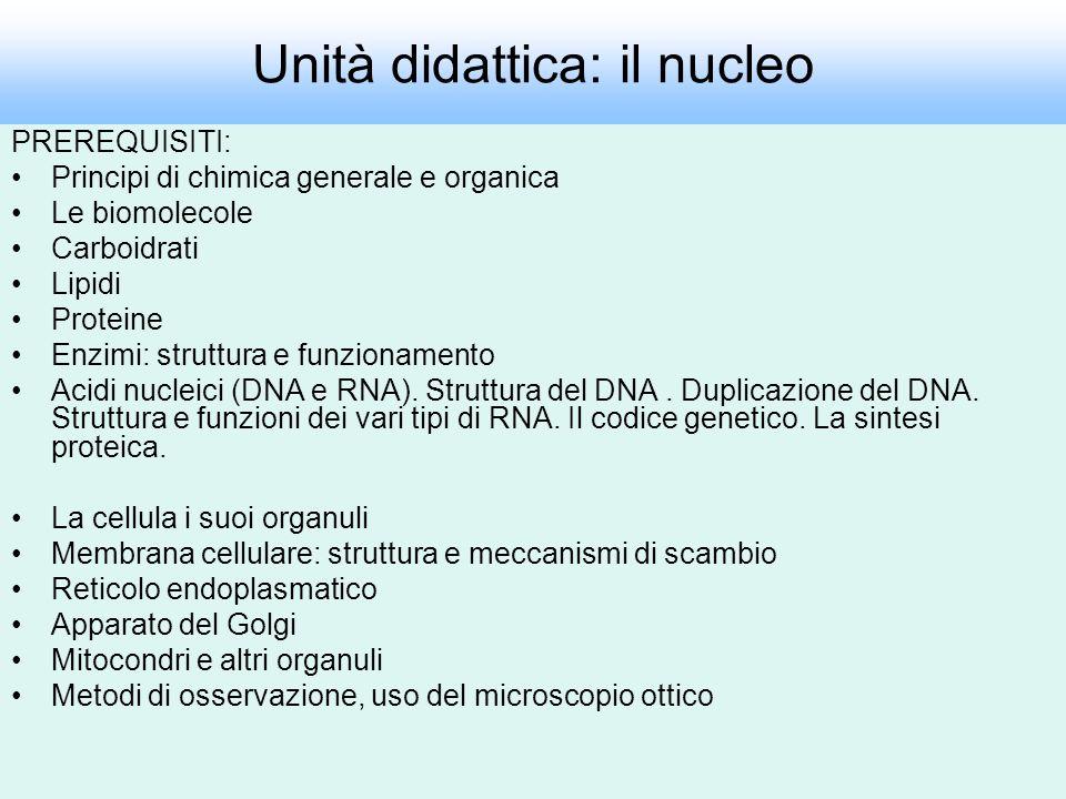 Unità didattica: il nucleo PREREQUISITI: Principi di chimica generale e organica Le biomolecole Carboidrati Lipidi Proteine Enzimi: struttura e funzio