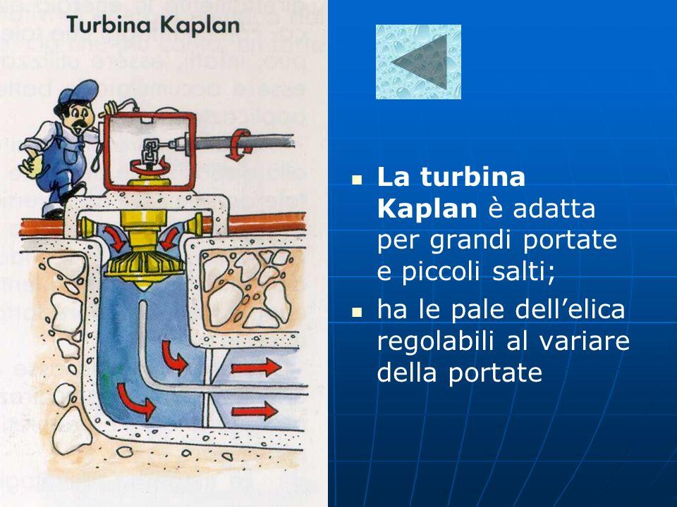 La turbina Kaplan è adatta per grandi portate e piccoli salti; ha le pale dellelica regolabili al variare della portate