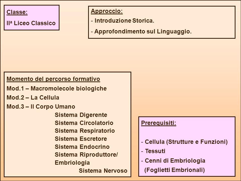 Momento del percorso formativo Mod.1 – Macromolecole biologiche Mod.2 – La Cellula Mod.3 – Il Corpo Umano Sistema Digerente Sistema Circolatorio Siste