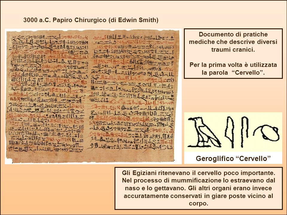 3000 a.C. Papiro Chirurgico (di Edwin Smith) Geroglifico Cervello Documento di pratiche mediche che descrive diversi traumi cranici. Per la prima volt